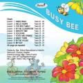 Učebnice angličtiny ZŠ - set Busy Bee 2 (učebnice, pracovní sešit, CD)