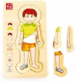 Výukové anatomické puzzle - KLUK
