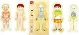 Výukové anatomické puzzle - KLUK Tim