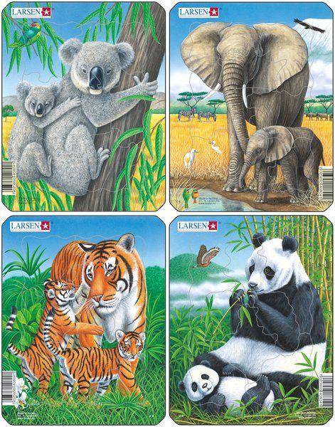 puzzle malé - KOALA, PANDA, TYGR, SLON Larsen